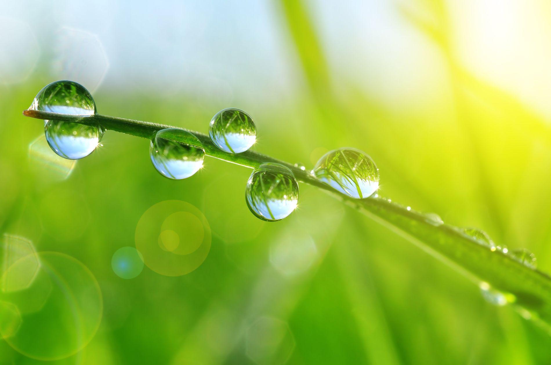 Responsabilidad ambiental - compromisos - natura